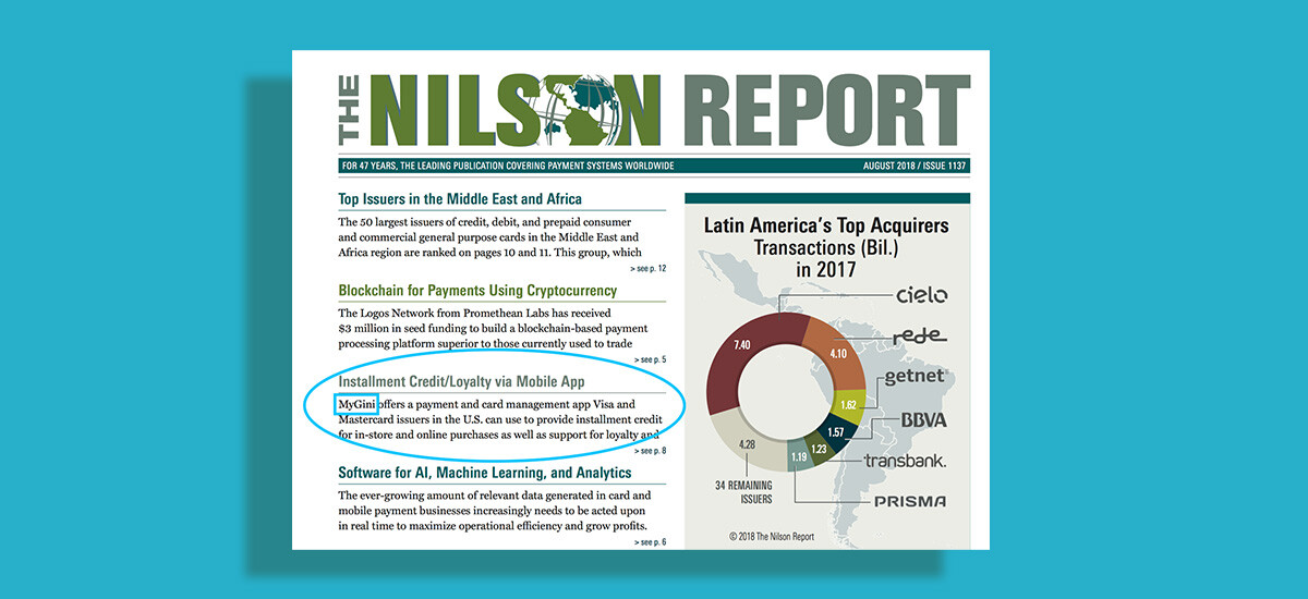MyGini at Nilson Report